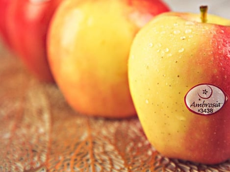 Ambrosia™ apples